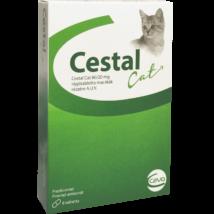 Cestal Cat tabletta 8 db